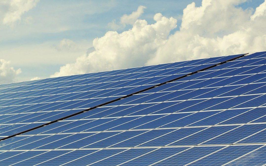 Solarparks naturverträglich bauen