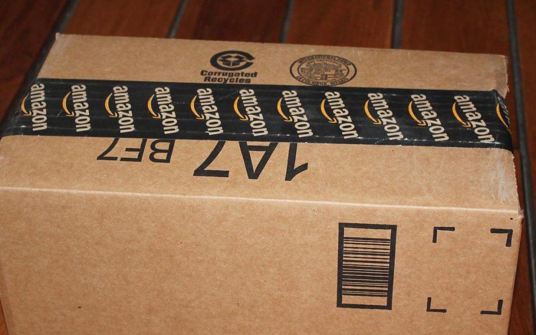 DIE LINKE begrüßt Amazon nicht
